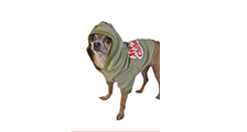 made-in-california-manufacturer-ruff-ruff-and-meow-aye-chihuahua-hoodie