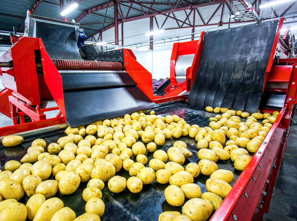 material-flow-gives-increased-visibility-into-food-manufacturing.