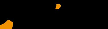 Tempest Technology Logo