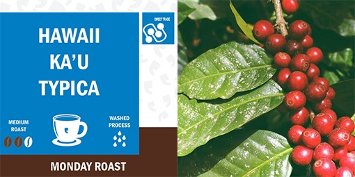 Made-in-California-manufacturer-Klatch-Coffee-Hawaii-Kau-Typica-Combined-photos.jpg
