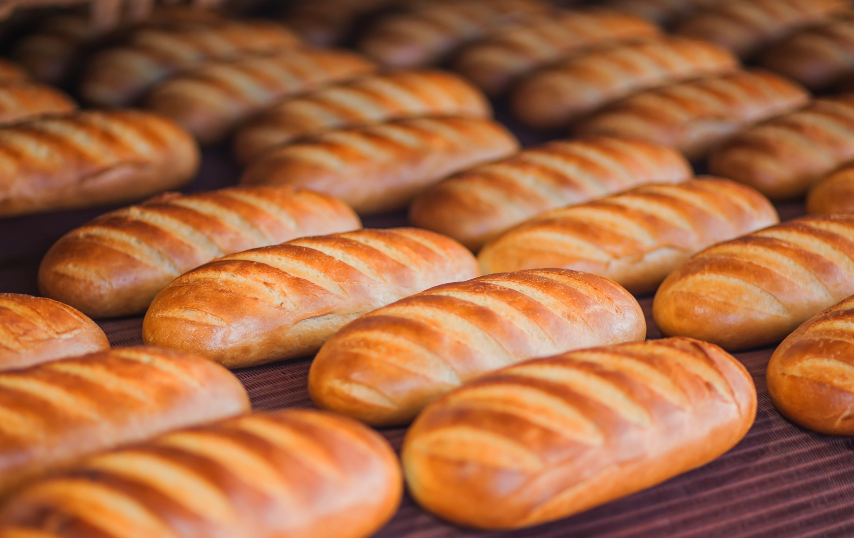 Bread Manufacturing.jpg